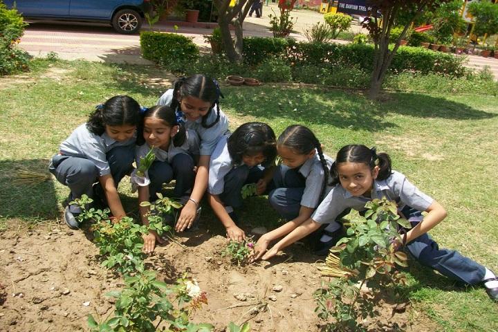 The Banyan Tree School-Plantation