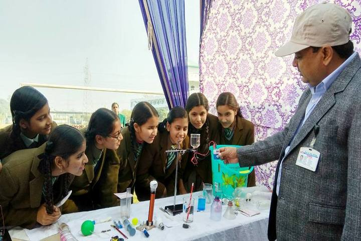 Shivalik Holy Mount Academy-Students Project