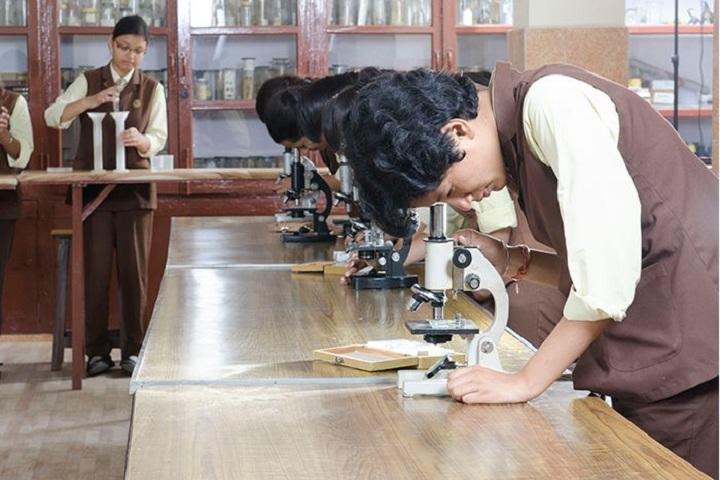 St AnnS Senior Secondary School-Biology-Lab