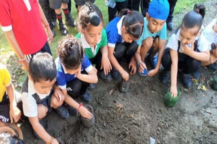 Templeten College-Plantation Activity