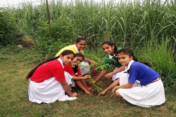 The Horizon School-Plant A Tree