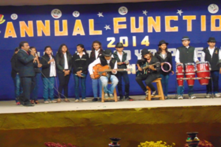 Ambuja Vidya Peeth- Annual Function