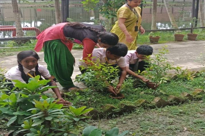 Bodhisukha School- Tree Plantation