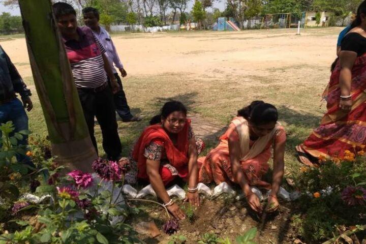 Devi Sushila Khedia Dav Public School-Gardening
