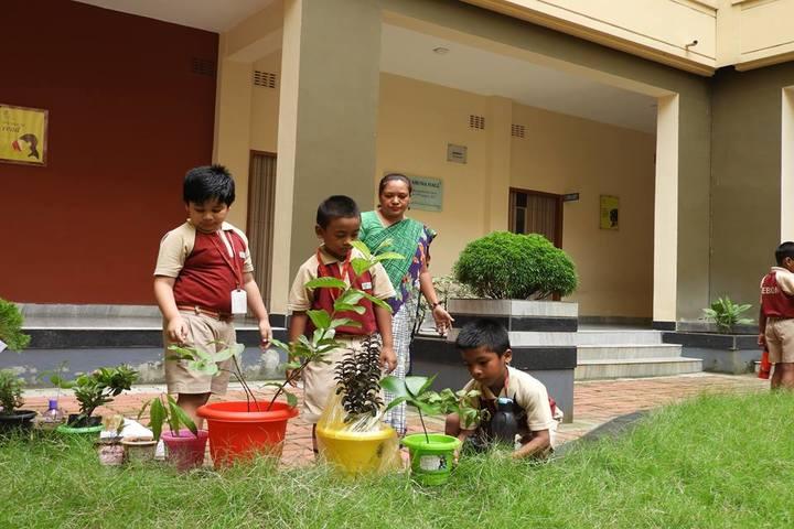Hebron School-Plant A Tree Programme