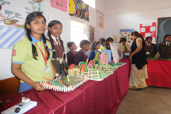 Bhilai Public School-Exhibition