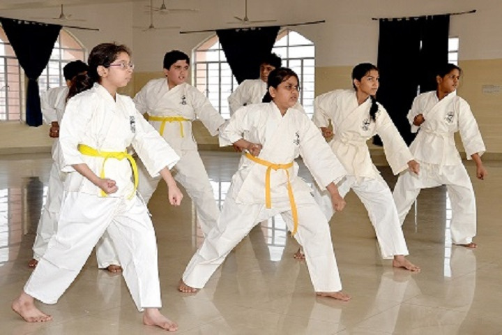 Lakshmipat Singhania Academy-Karate Class