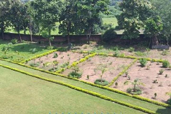 Nandlal Jalan Shiksha Sadan-Garden
