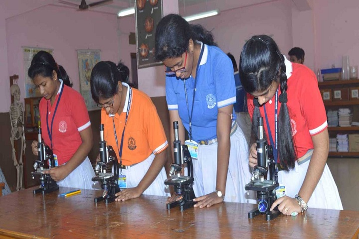 Satish Chandra Memorial School-Lab
