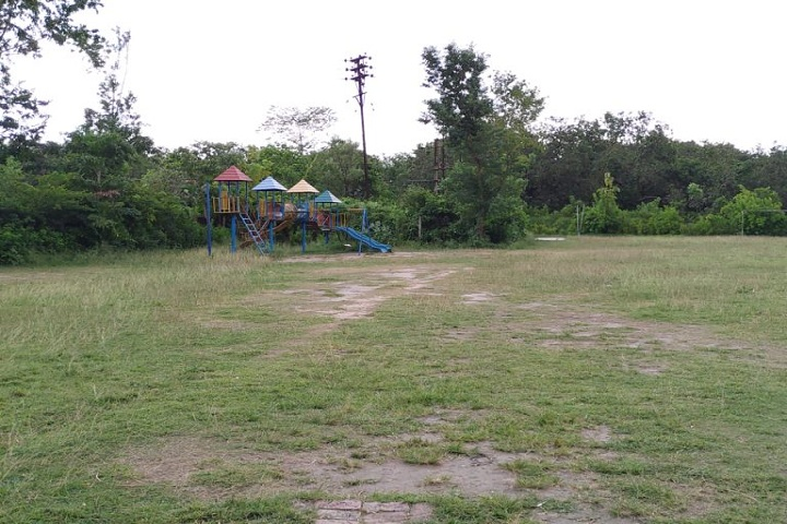Sister Nivedita Public School-Play Ground