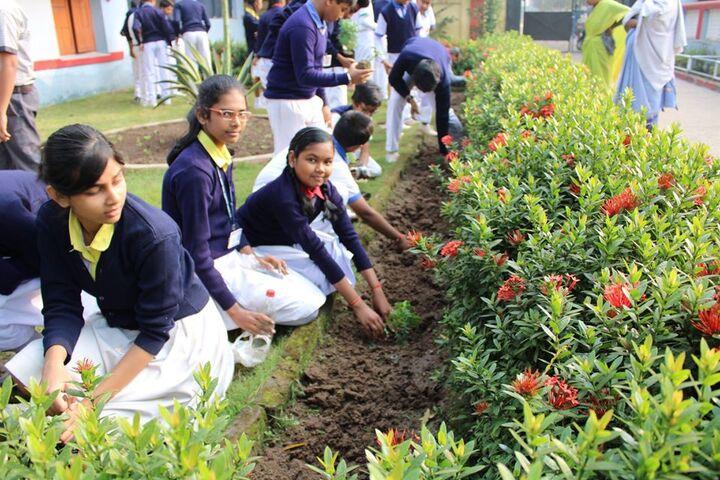 South Eastern Railway Mixed High School-Tress Plantation