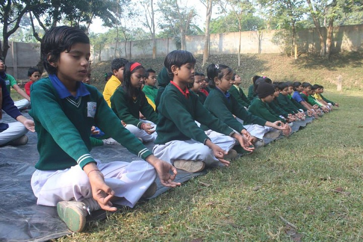St Stephens International School-Yoga