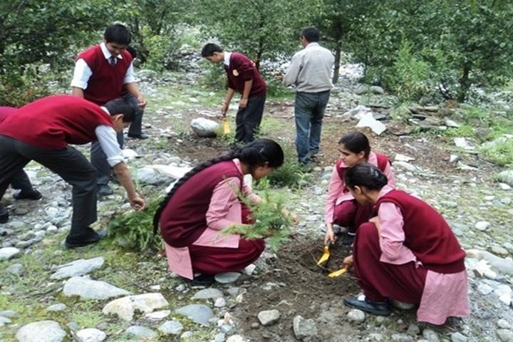 Day Star School-Plantation Activity