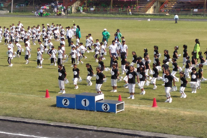 Dayanand Anglo Vedic Public School-Annual Sports