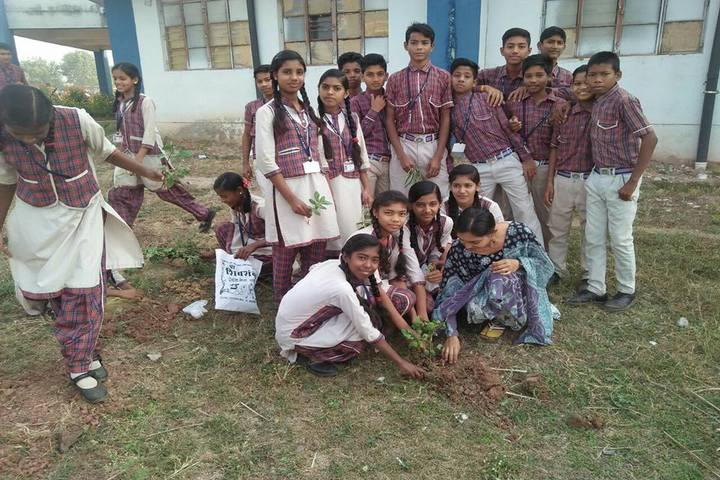 DAV Mukhyamantri Public School-Tree plantation