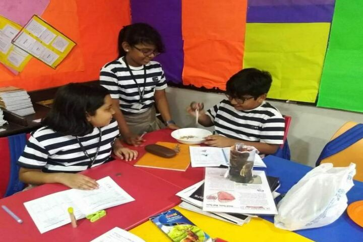 The Indian Public School-Classroom Activity