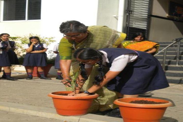 Rashtreeya Vidyalaya Public School-Tree Plantation