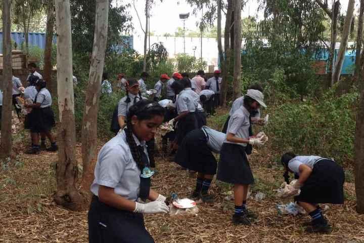United International School-Clean And Green
