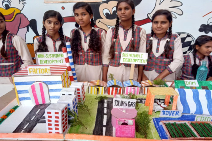 DAV Mukhyamantri Public School-Science Exhibition