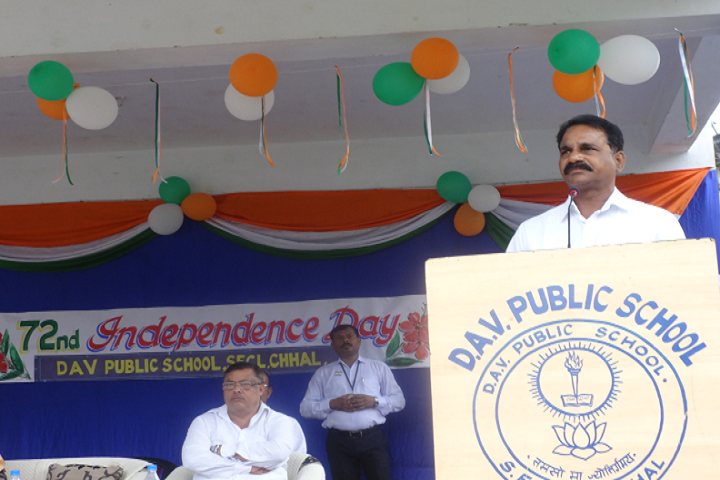 Dav Public School - Independence Day