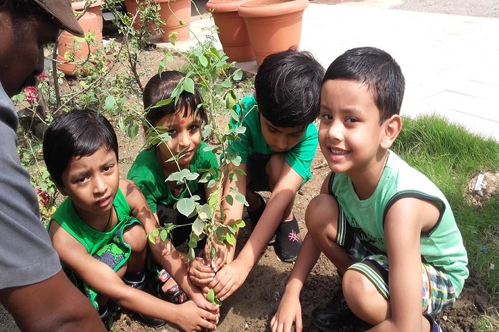 Disha College Of Higher Secondary Studies - plantation