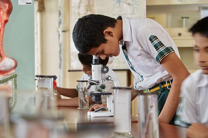 Tree House High School-Biology lab
