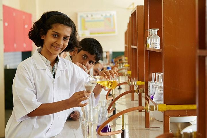 Tree House High School-Chemsitry lab