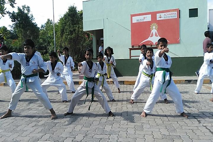 Aklavya International School - karate