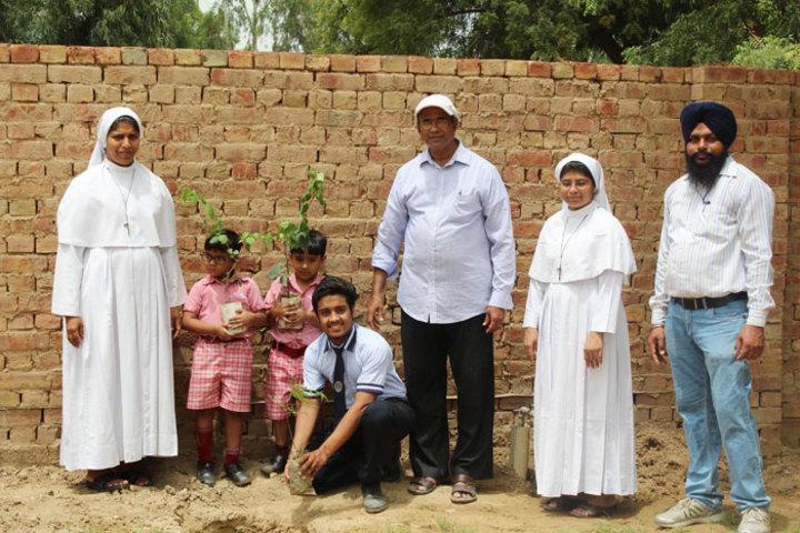 Little Flower Convent School - Tree Planting