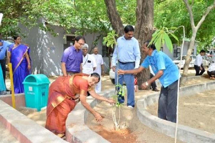 Ida Scudder School-Tree Plantation