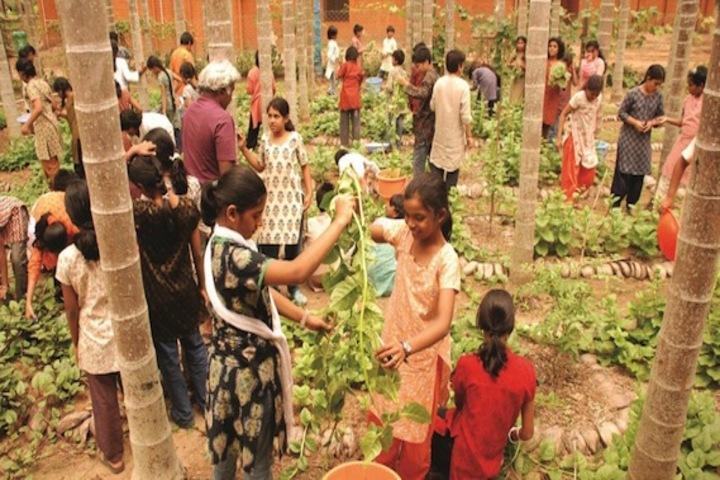 Isha Home School-Planting