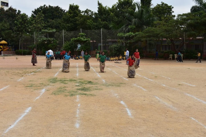 Sherwood Public School-Play Ground