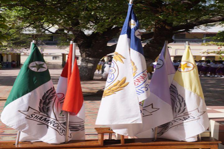 """St Anns High School-School flags"""
