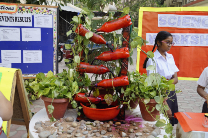 Sheiling House School-Science Exhibition