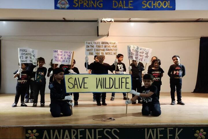 Spring Dale College-Awarness Program on Wild life