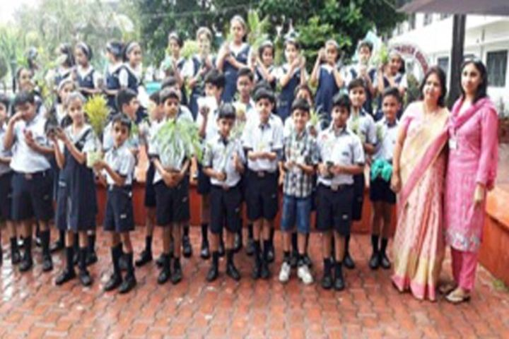 City Montessori Inter College-Plantation