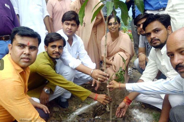 Holy Angels School-Tree Plantation