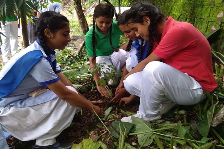 Sunrise Academy - Tree Planting