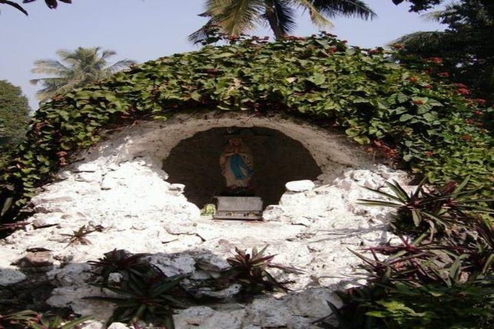 Auxilium Convent School-Garden