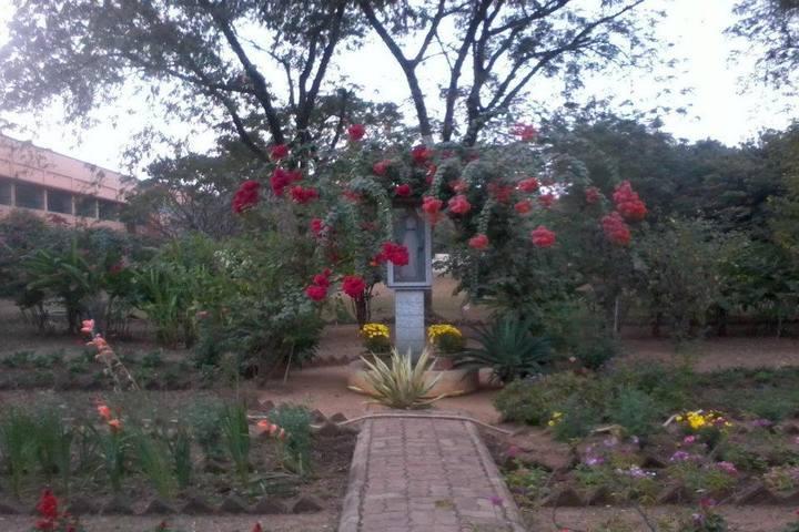 Carmel Convent High School-Garden