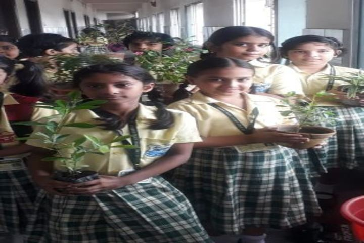 St Agnes Convent School-Environment Day