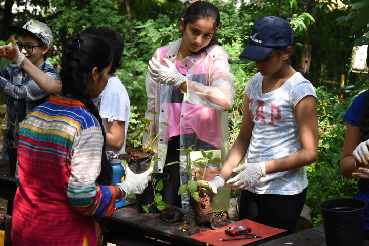 American School of Bombay-Environment Science Class