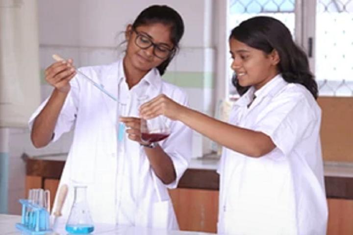 Silver Oaks International School-Lab