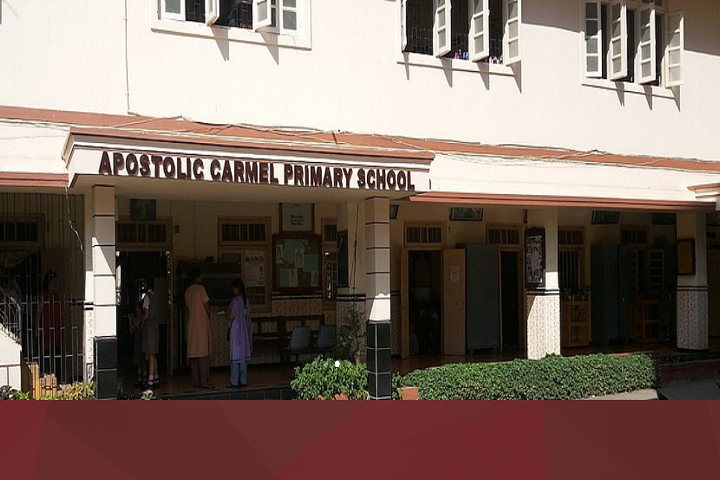 Apostolic Carmel High School and Junior College-Front View