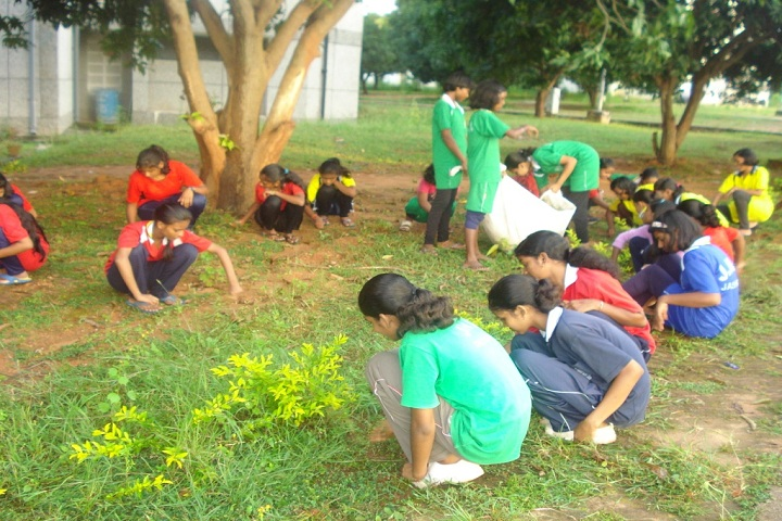 Jawahar Navodaya Vidyalaya Jashpur-tree plantation
