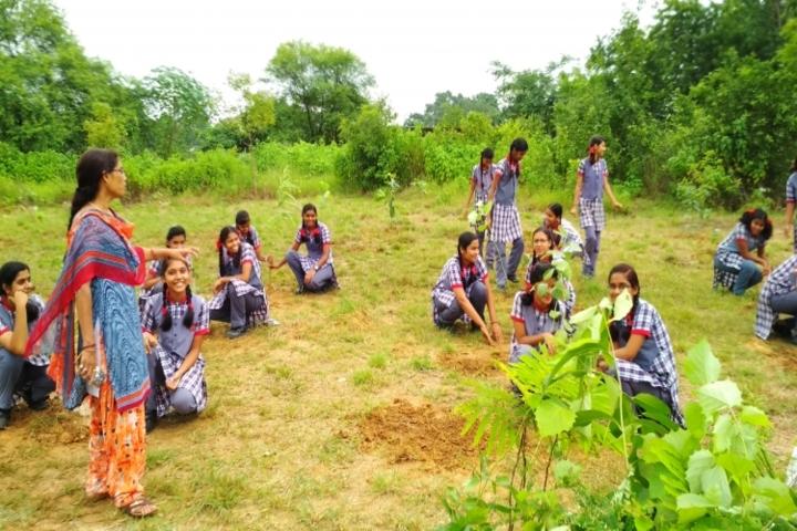 Kendriya Vidyalaya Raigarh-Tree plantation