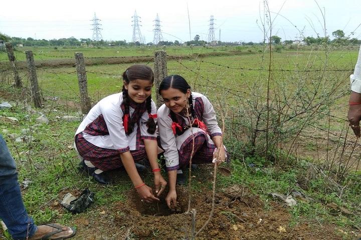 Lions Dav Public School-Tree Plantation1