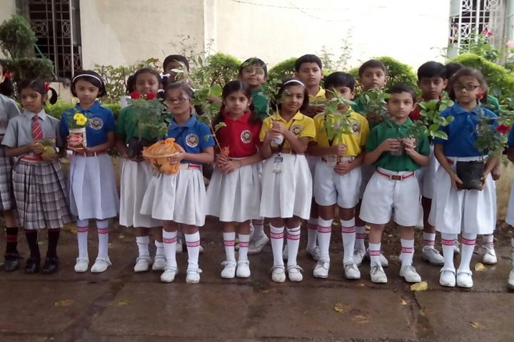 Little Flower Higher secondary School-tree plantation