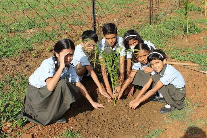 Mansarowar Vidyalaya-tree plantation
