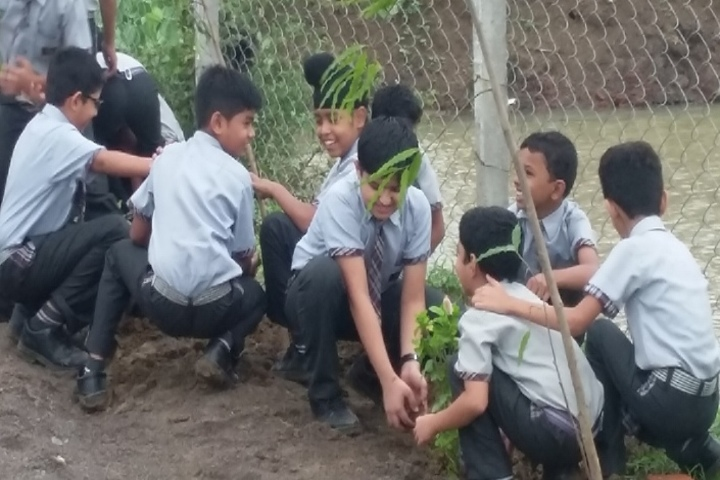 NEERAJ BAJPAYEE INTERNATIONAL SCHOOL-tree plantation